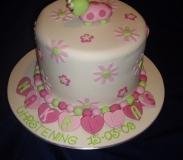 baby-showerchristening-cakes3